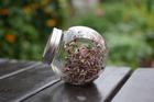 Kiełkownica słoikowa - słoik na kiełki + nasiona gratis (2)