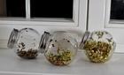 Kiełkownica słoikowa - zestaw 3 sztuki + nasiona gratis (2)