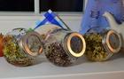 Kiełkownica słoikowa - zestaw 3 sztuki + nasiona gratis (4)