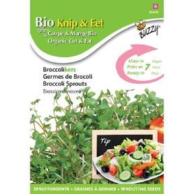 BIO nasiona na kiełki - Brokuł, 25 g