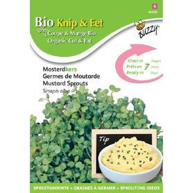 BIO nasiona na kiełki - Gorczyca, 30 g