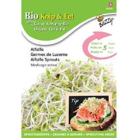 BIO nasiona na kiełki - Lucerna, 30 g