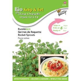 BIO nasiona na kiełki - Rukola, 30 g