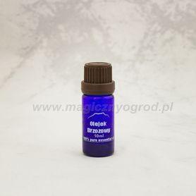 Olejek Brzozowy (z kory brzozy cukrowej) 100%, 10 ml, Nanga