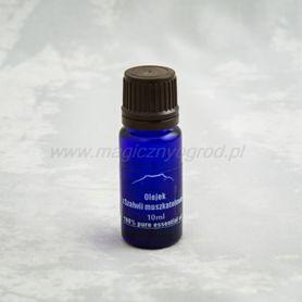 Olejek z szałwii muszkatołowej 100%, 10 ml, Nanga